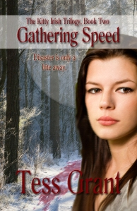 Gathering Speed large cover