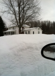 Photo from my driveway. Rear view mirror for scale.